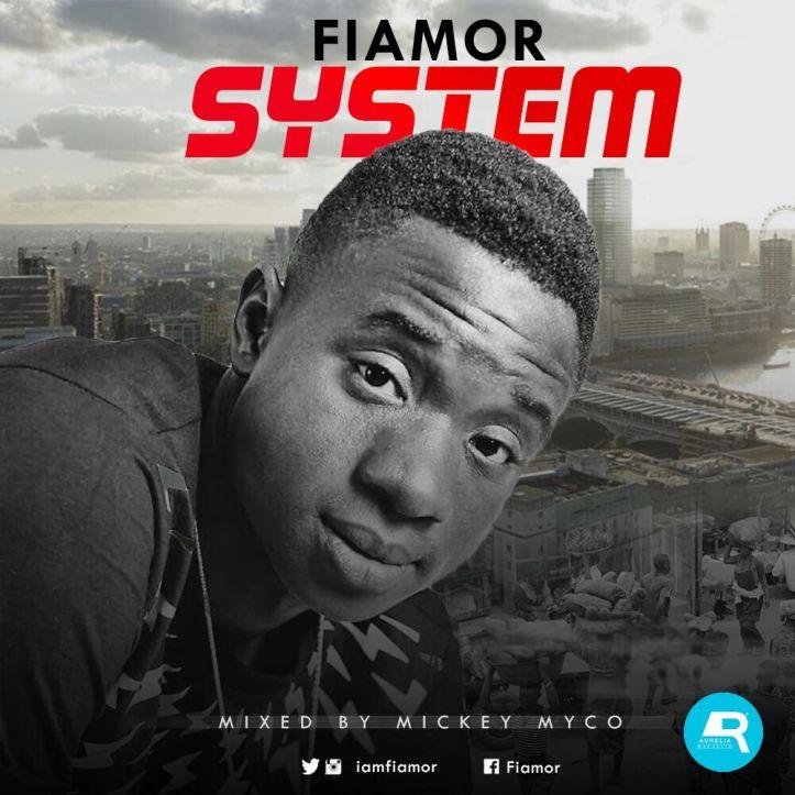 fiamor-system-cover